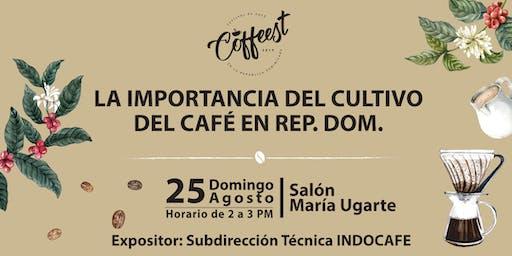 La importancia del Cultivo del Café en la República Dominicana
