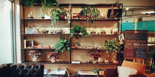 Indoor Plant Workshop