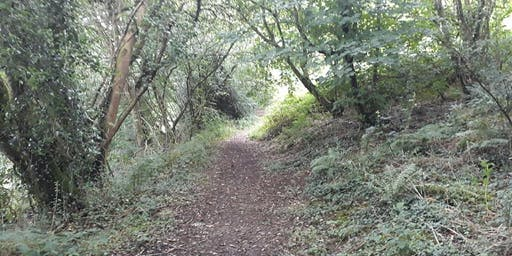 Drefach Felindre 10km Walk/Jog/Run Challenge