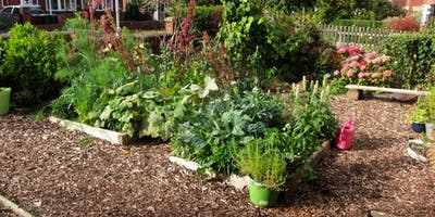 Introduction to Edible Gardening