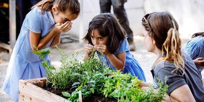Gardening Basics