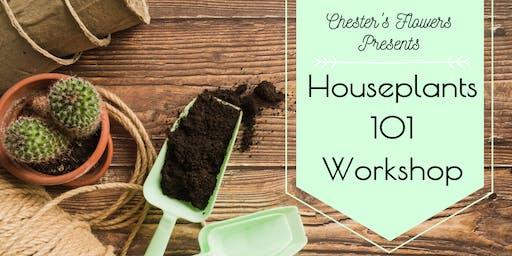 Houseplant 101