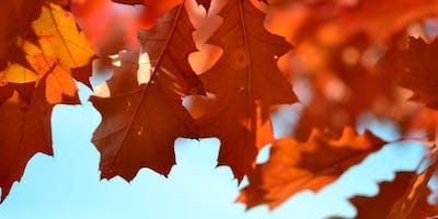 Mindfulness, Positivity and Gratitude Workshop