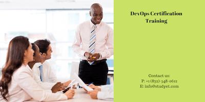 Devops Certification Training in Decatur, IL