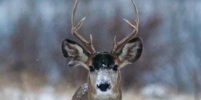 Junior Naturalist: Winter is Coming!