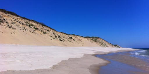 National Public Lands Day All-Cape Beach Cleanup