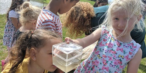 Pond Dipping with Naturehood