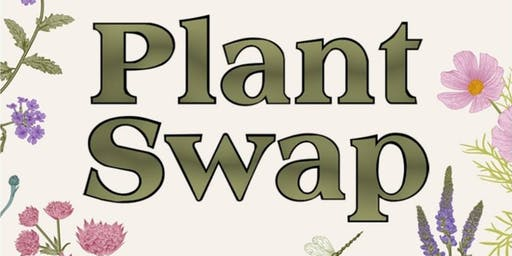 Plant & Seed Swap