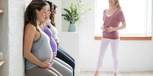 Prenatal Pilates - The Bump Method (7 Week Series)
