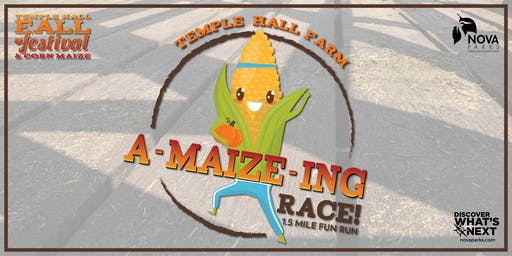 Temple Hall Farm A-Maize-ing Race!