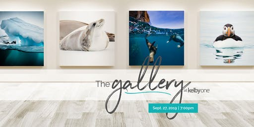 The Gallery at KelbyOne Opening - Dr. Andrew Peacock