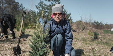 Plant A Tree Day in Cincinatti tickets