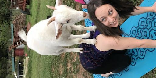 Mimosas & Goat Yoga: Sept 14th