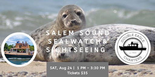 Salem Sound SealWatch & Sightseeing