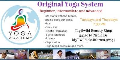 Yoga Academy USA Original Yoga System First class Free
