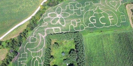 Adult Corn Maze Night