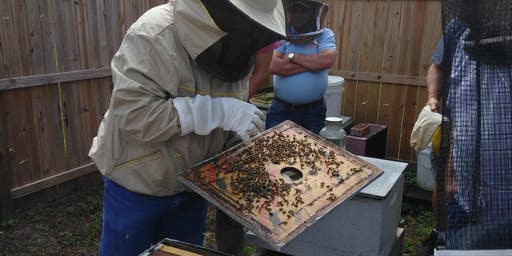 Fall 2019 Beginning Beekeeper's Short Course