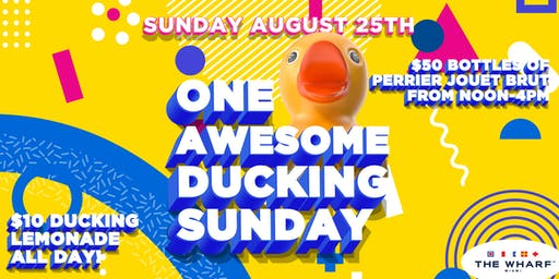 ONE AWESOME DUCKING SUNDAY!