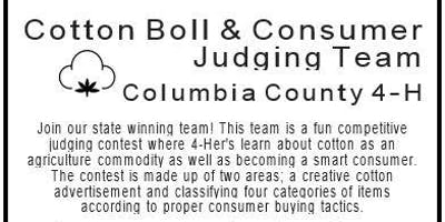 4-H Cotton Boll and Consumer Judging Team (Grades 5-12/$10)