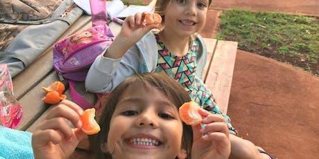 Desayunos y meriendas- Familias Saludables en Accion- Parte 1 tickets