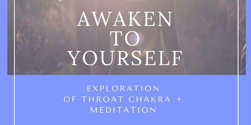 Throat Chakra and Meditation Workshop