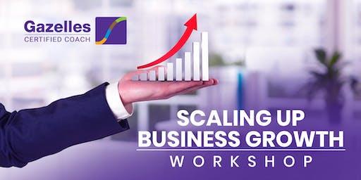 Scaling Up Workshop - Mastering the Rockefeller Habits 2.0 Workshop