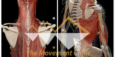 Overcoming Neck and Shoulder Pain
