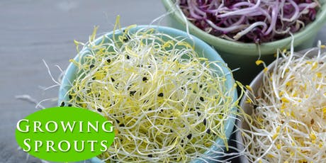 Growing Sprouts: Nature's Superfood tickets