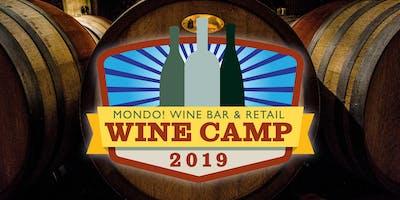 Wine Camp 5 - Spain