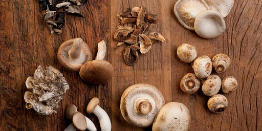 Culinary Center in Lincoln City - Mushroom Madness On The Coast