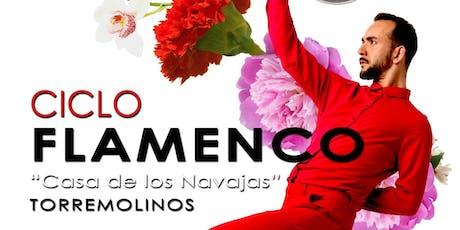 Ciclo Flamenco En la Casa de Los Navajas  entradas