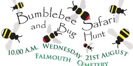 Bumblebee Safari tickets