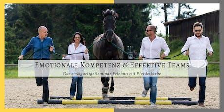Emotionale Kompetenz & Effektive Teams (für Führungskräfte und HR Experten) Tickets