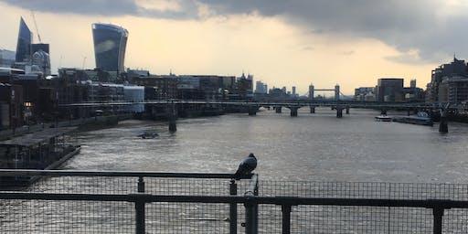 Thames Path City to City Walk