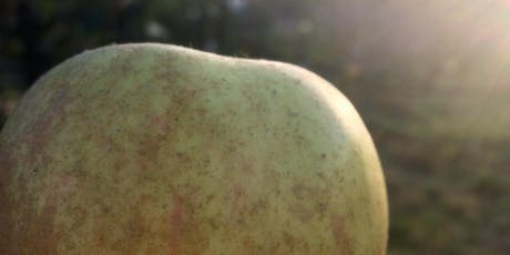 York's Orchard Fruit Festival tickets