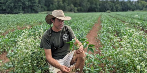 No-Till & Cover Cropping: Techniques to Save Time & Increase Soil Health