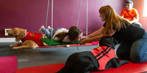 Terapia Asistida con Animales y Perros de Asistencia