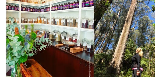 Walk for Wellness - Tea, Apothecary and Badgers Weir