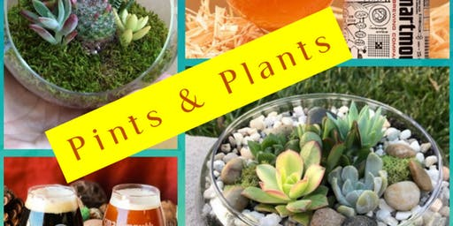 Pints and Plants   (DIY Terrarium)