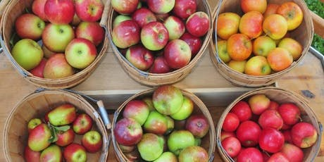 Apple Picking at BJ Reece Orchards tickets