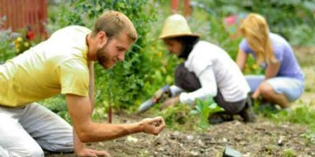 Permaculture Service Day tickets