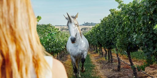Discover Yarra Valley Wines