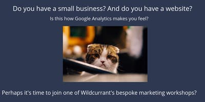 Introduction to Google Analytics for Small Business who have a website (starting right at the beginning!)