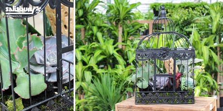 Birdcage Succulent Planter tickets