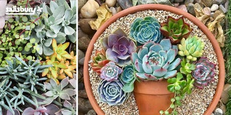Nesting Succulent Pot tickets