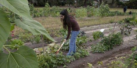Brown-bag Gardening Series: Vegetable Gardens tickets