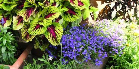 Brown-bag Gardening Series: Container Gardening tickets