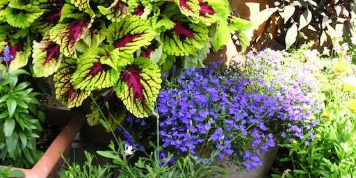 Brown-bag Gardening Series: Container Gardening