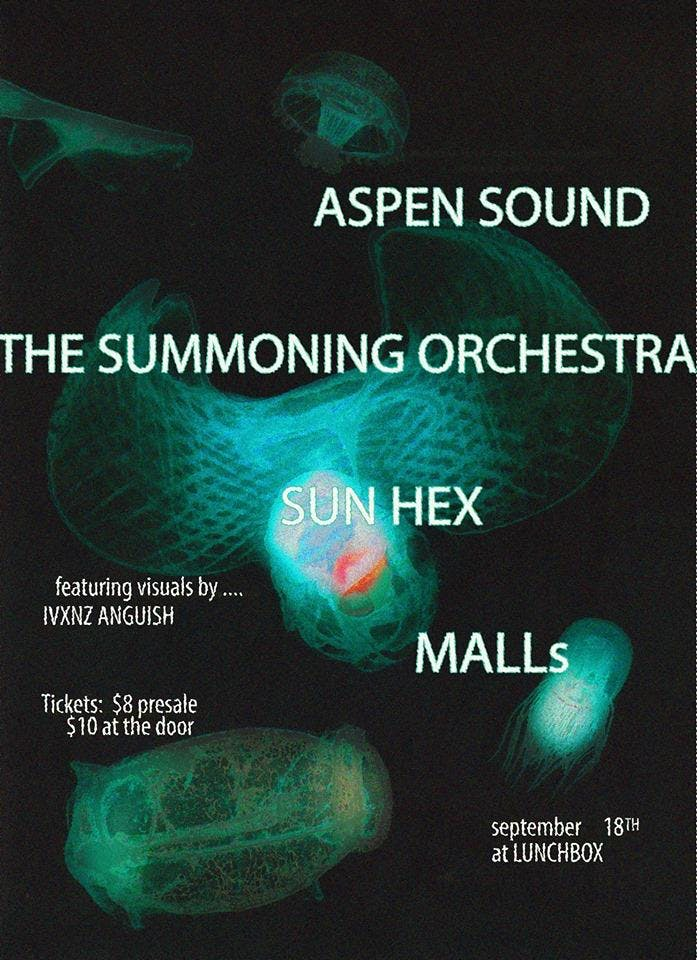 Aspen Sound // The Summoning Orchestra // Sun Hex // MALLS
