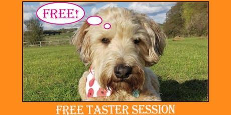 Free Taster Dog Training Session tickets